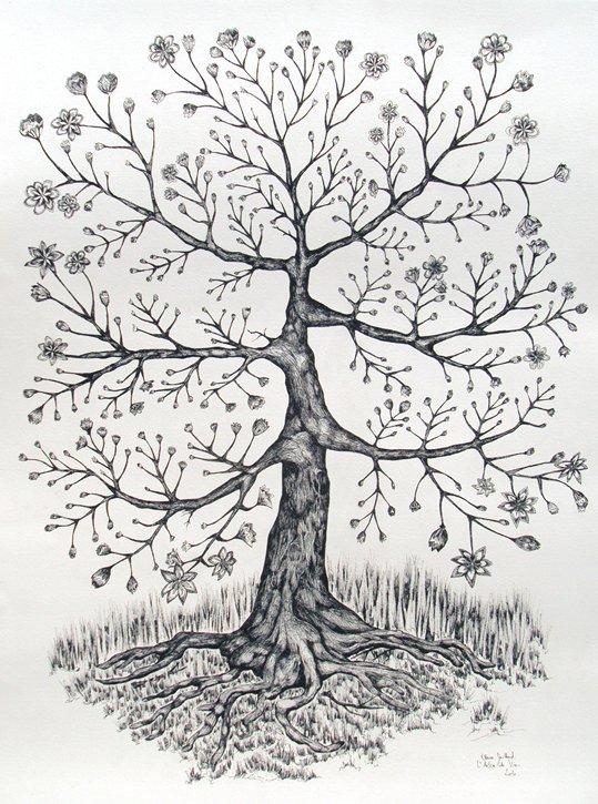 arbredeviebd2.jpg